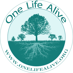 cropped-logo-onelifealive-pequeno-1-1